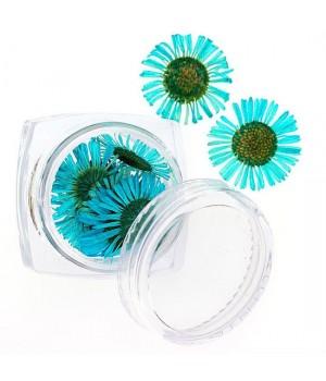 Сухоцветы для дизайна ногтей №104