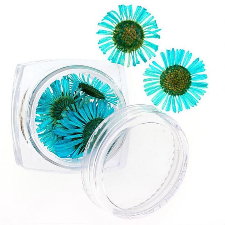 Сухоцветы для дизайна и украшения ногтей №104