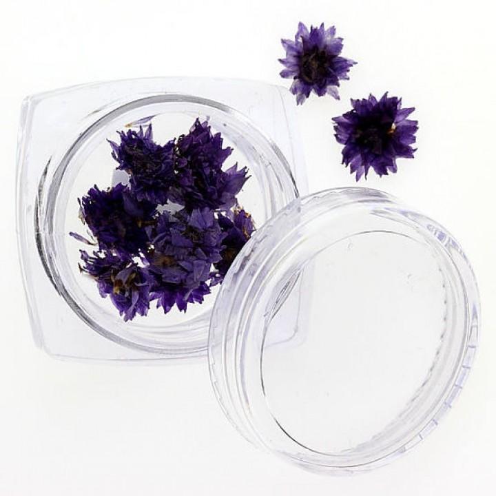 Сухоцветы для дизайна и украшения ногтей №108