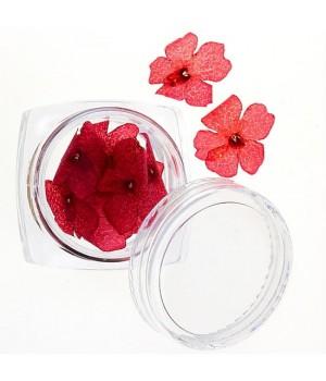 Сухоцветы для дизайна ногтей №30