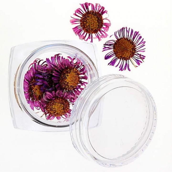 Сухоцветы для дизайна и украшения ногтей №32
