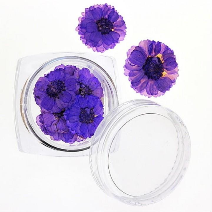 Сухоцветы для дизайна и украшения ногтей №36