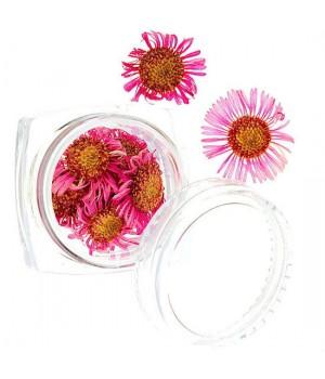 Сухоцветы для дизайна ногтей №52