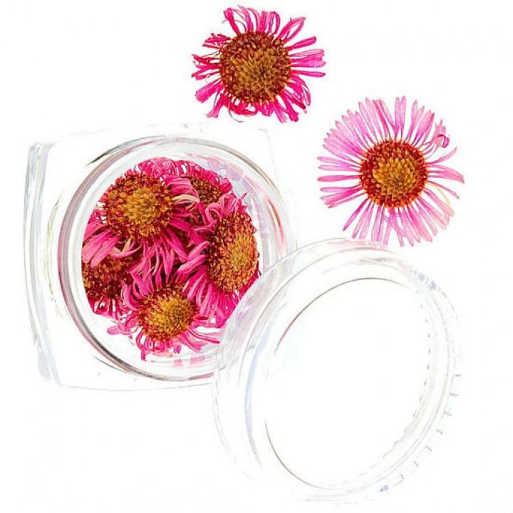 Сухоцветы для дизайна и украшения ногтей №52
