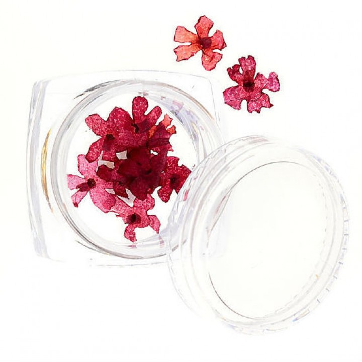 Сухоцветы для дизайна и украшения ногтей №55