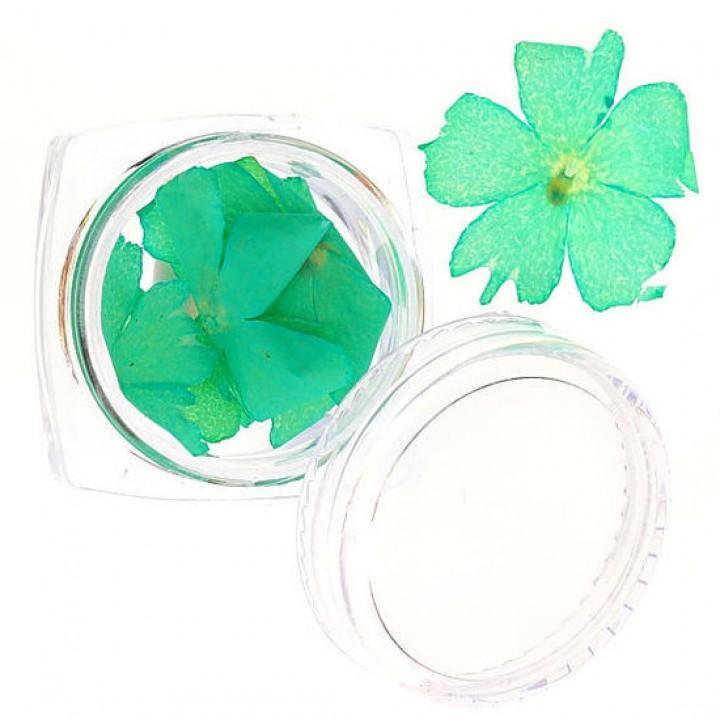Сухоцветы для дизайна и украшения ногтей №59