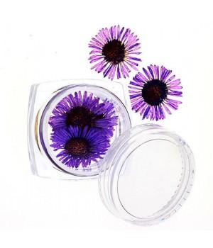 Сухоцветы для дизайна ногтей №63