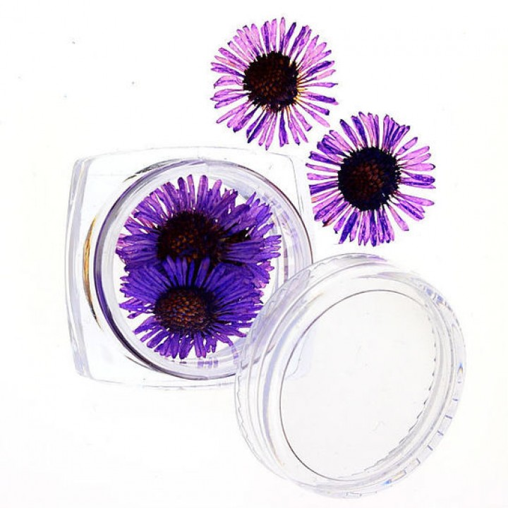 Сухоцветы для дизайна и украшения ногтей №63