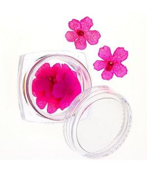 Сухоцветы для дизайна ногтей №64