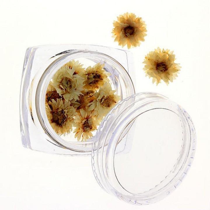Сухоцветы для дизайна и украшения ногтей №72
