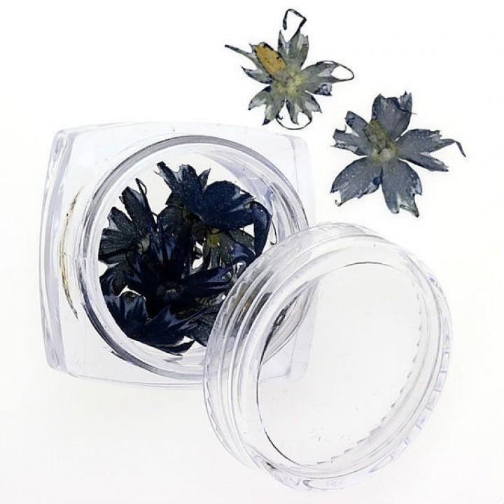 Сухоцветы для дизайна и украшения ногтей №78