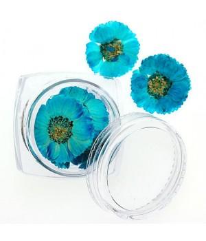 Сухоцветы для дизайна ногтей №80