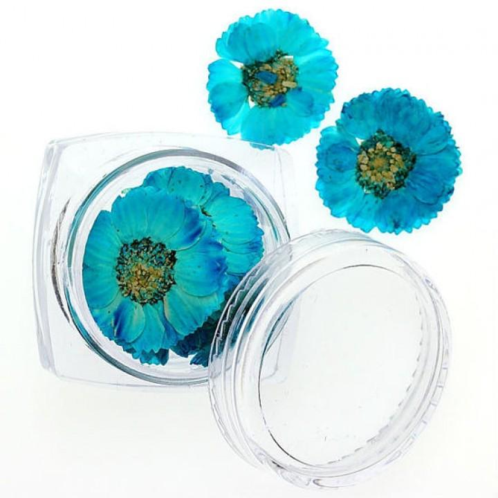 Сухоцветы для дизайна и украшения ногтей №80