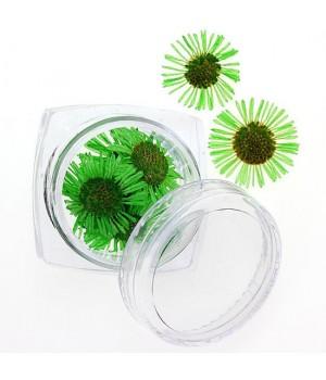 Сухоцветы для дизайна ногтей №87