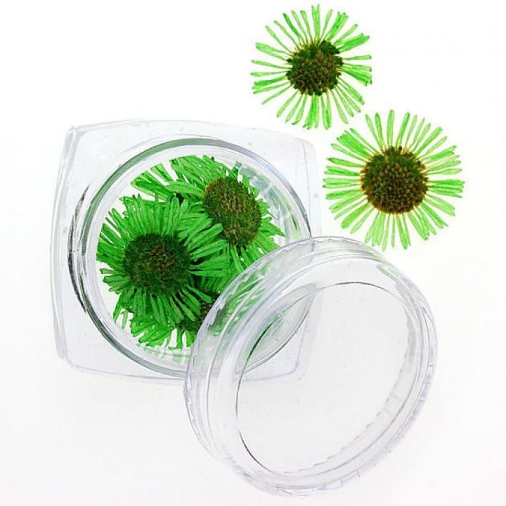 Сухоцветы для дизайна и украшения ногтей №87