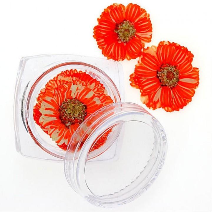 Сухоцветы для дизайна и украшения ногтей №93