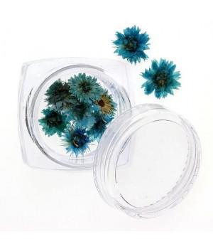 Сухоцветы для дизайна ногтей №94