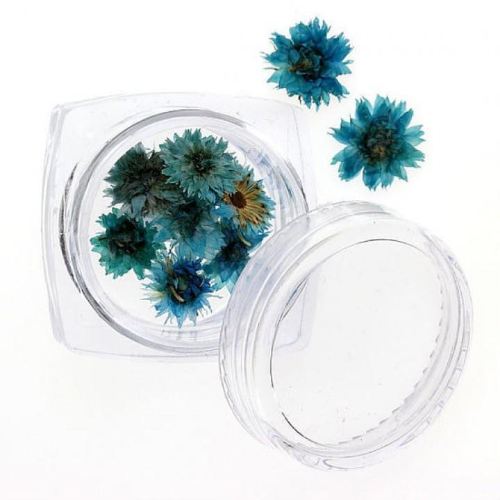 Сухоцветы для дизайна и украшения ногтей №94