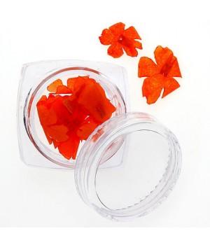 Сухоцветы для дизайна ногтей №95
