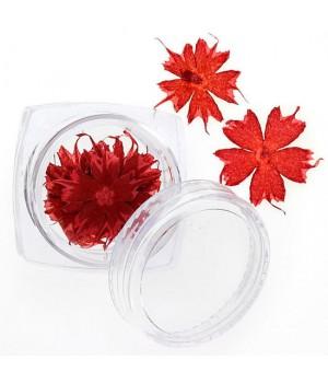 Сухоцветы для дизайна ногтей №100