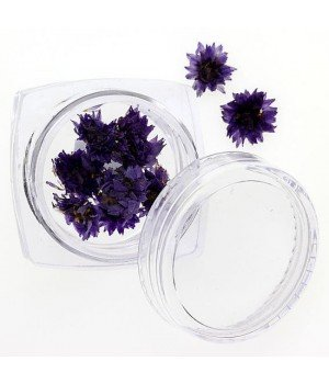 Сухоцветы для дизайна ногтей №108