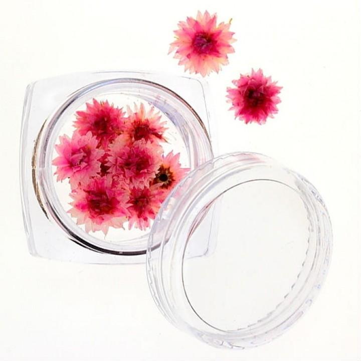 Сухоцветы для дизайна и украшения ногтей №31