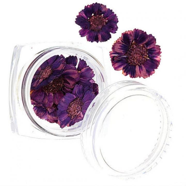 Сухоцветы для дизайна и украшения ногтей №53