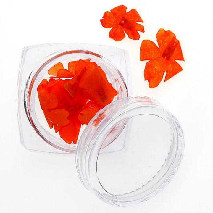 Сухоцветы для дизайна и украшения ногтей №95